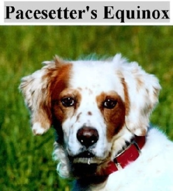 "Pacesetter's Equinox - ""Ted"""